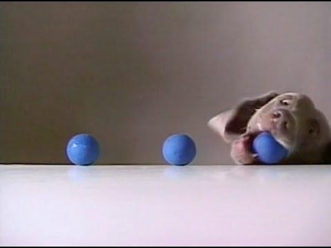 Sesame Street - Fay Ray - 3 Balls Addition