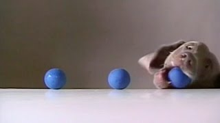 Sesame Street - Fay Ray - 3 Balls Addition