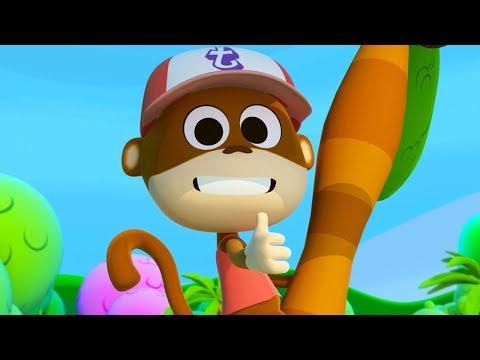 El Monito Tico - Las Canciones del Zoo 3   El Reino Infantil