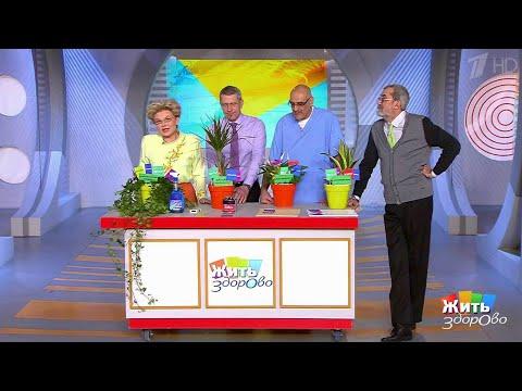 Жить здорово! Домашние растения против токсинов. (20.07.2017)