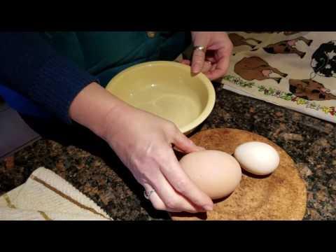 Фантастические яйца / Zertifizierte Handelsvertreter in Deutschland www.z-trans.org - видео онлайн