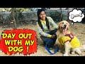 - Day Out With My Dog | Golden Retriever | Part-3 | Sanjhalika Vlog