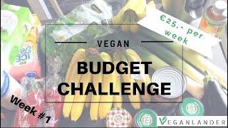 Budget vegan boodschappen challenge! €100,- voor 2 weken voor 2 personen