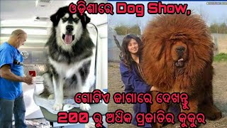 Dog show In Bhubaneswar, Odisha 2017 latest video where you can see more than 200 types of Dogs