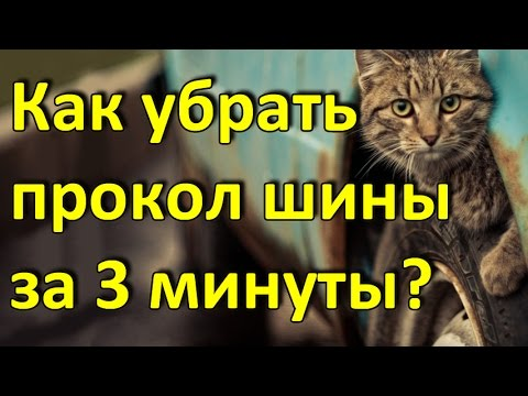 Два простых способа, как недорого отдохнуть в Крыму. - YouTube