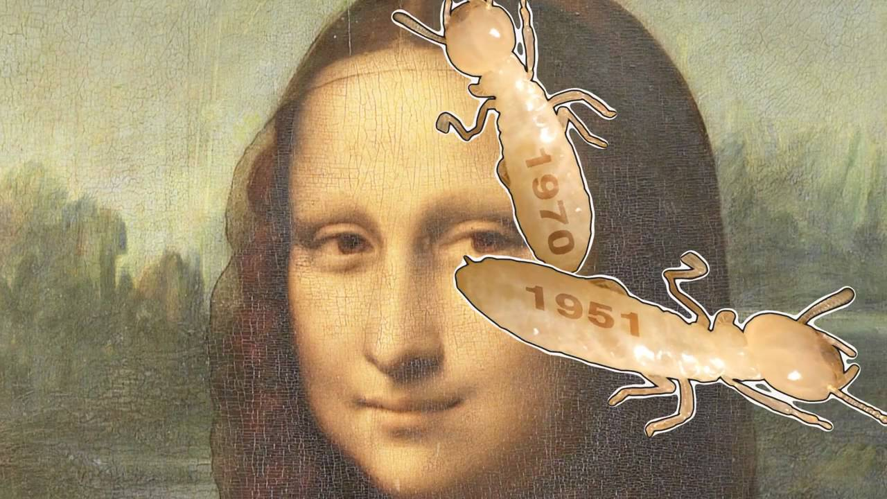 The 10 Worst Things That Have Happened To The Mona Lisa Youtube