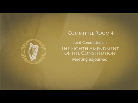 The Eighth Amendment committee live