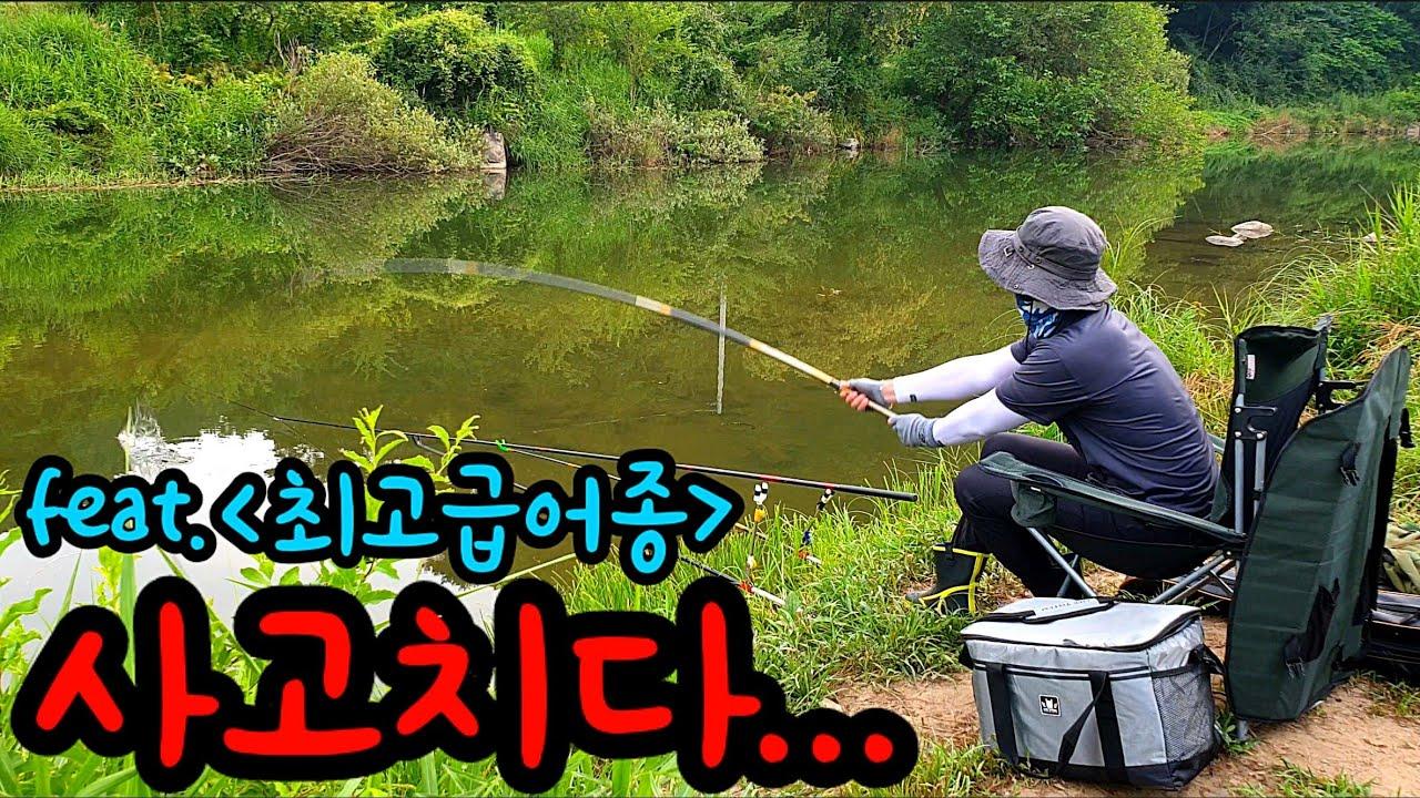 낚시 민물낚시 귀한 최고급 어종을 잡아서 먹어보자! 낚시동영상 낚시유튜버 Let's catch and eat expensive fish