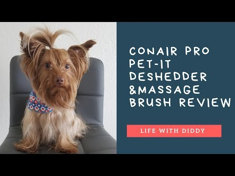 Life with Diddy: Conair Pro Pet-It Deshedder Review