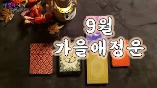 양밥아재의 타로이야기 : 가을애정운,9월애정운,하반기애정운(타로카드,애정운,가을애정운,속마음,운세운명,인연,…