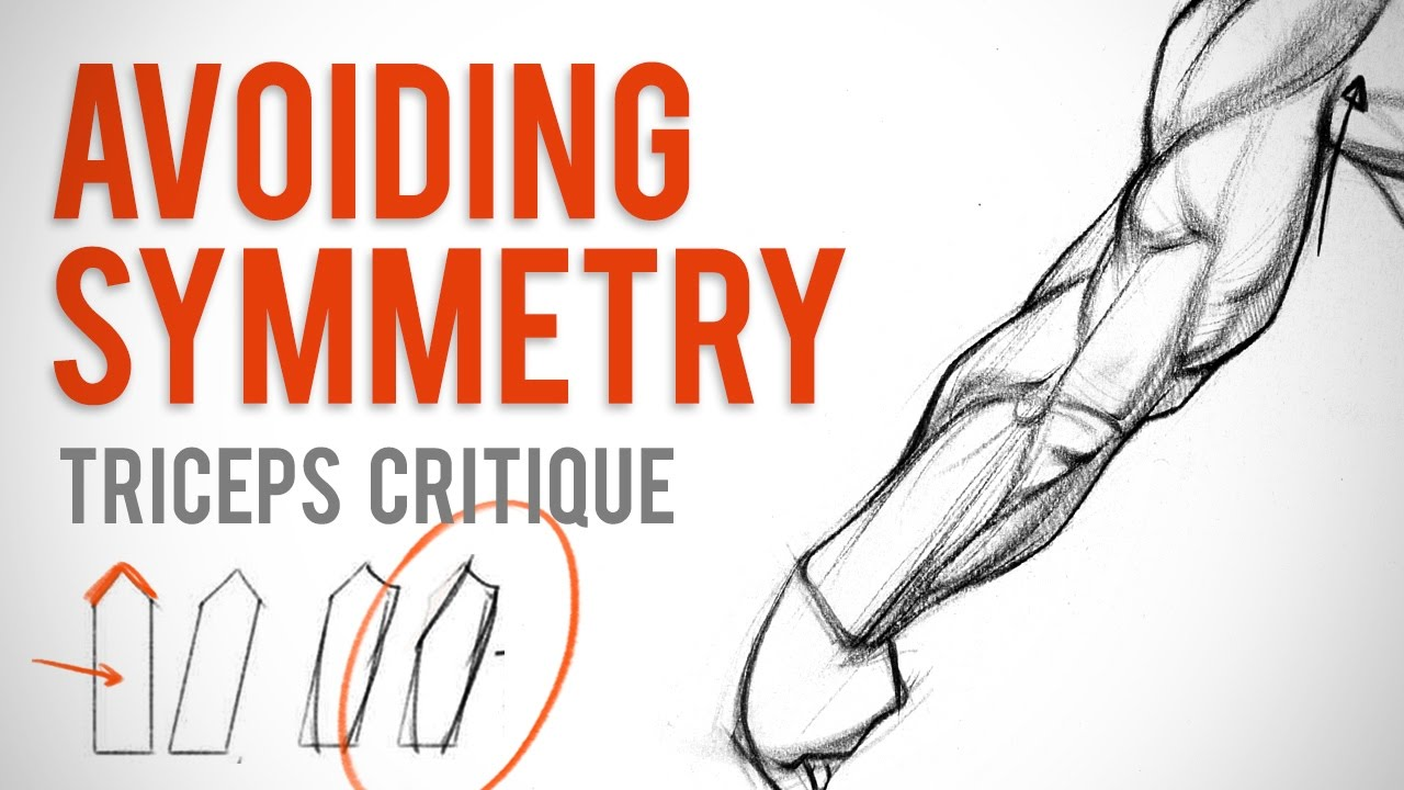 Avoiding Symmetry when Drawing Triceps - Anatomy Critique - YouTube