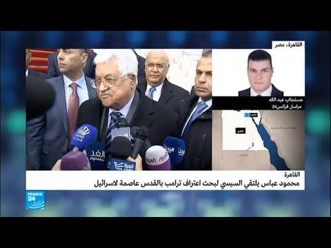 محمود عباس يلتقي السيسي لبحث تداعيات قرار ترامب  - نشر قبل 2 ساعة
