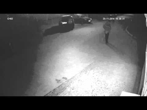 видео: уличная видеокамера ctv hdb3620 pe
