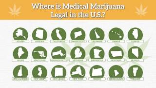 In What States is Pot Legal?