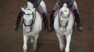 Versailles : Les spectacles reprennent à L'Académie Equestre