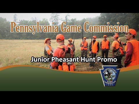 Junior Pheasant Hunt Promo