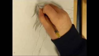 drawing sakura