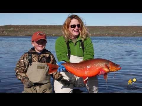 Nunavut Recreational Sport Fishing Video