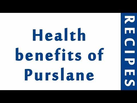 Health benefits of Purslane | HEALTHY BENEFITS OF VEGGIES | MY HEALTH