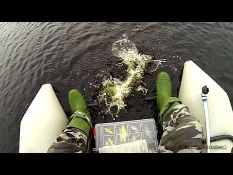 Bright Vs Dark Experiment: Pike & Perch Fishing With Lures:. Рыбалка: окунь и щука на воблер.