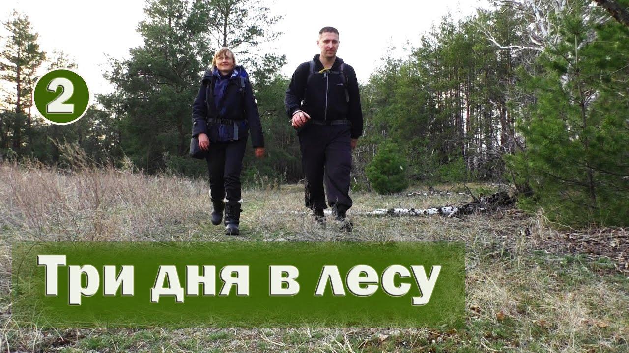 ⛺#2 Пеший поход на 3 дня и 2 ночи   Три дня в лесу (походный быт, мороз, ветер)