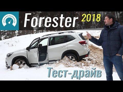 Где застрянет Форестер? Обзор Subaru Forester 2018