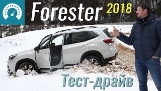 Тест-драйв Subaru Forester 2018
