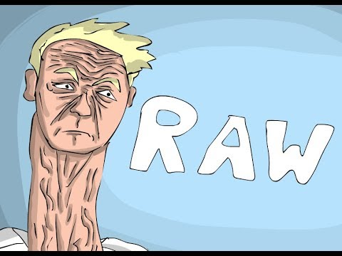 Gordon Ramsay Animated   -    R A W