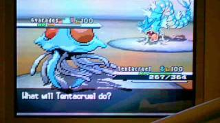 Pkmn BW Roulette #1 Xerxes vs Second -Through the sand and rain-