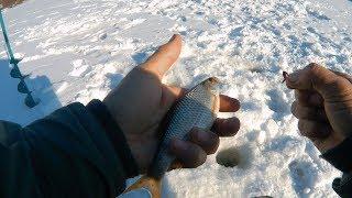 Как я закрыл сезон зимней рыбалки 2018