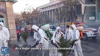 Chinese grassroots donations aid Iran's fight against COVID-19