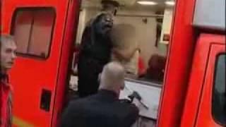 Zigeuner gegen Polizei
