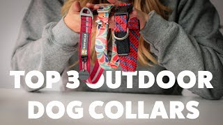 The Top 3 Outdoor Dog Collars | The Dog People Review | Rover.com