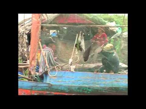 Indochina pioneer   Cambodian Fish tennis.wmv