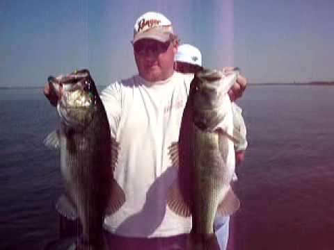 Lake Toho Bass Fishing...BIG Largemouth bass caught near Kissimmee, Florida