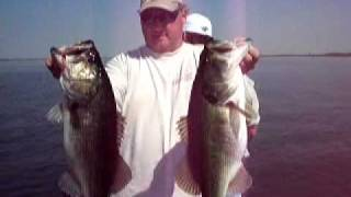 Lake Toho Bass Fishing...BIG Largemouth bass caught near Kissimmee, Florida