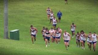 Blues pre-season training: field-based conditioning session