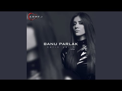 Narin Yarim (Remix)