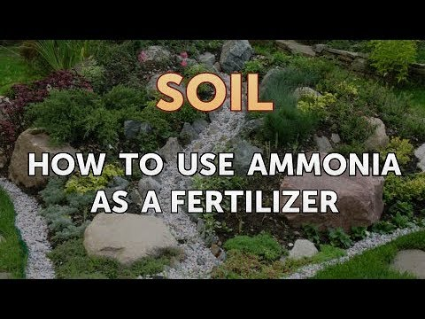 How To Use Ammonia As A Fertilizer