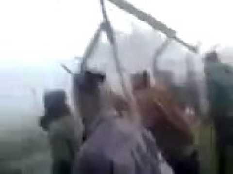 AMAZING Animal trafficking in Indo-Bangladesh border