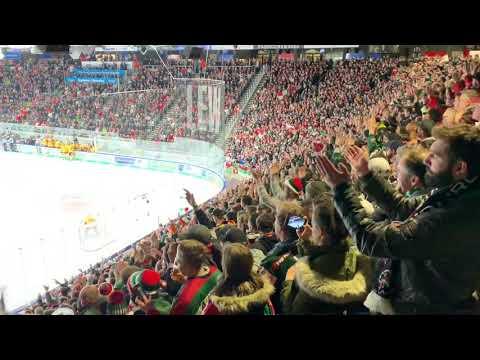 Augsburger Panther - Düsseldorfer EG 7:1 - DEL Playoffs 2019 - Viertelfinale Spiel 1