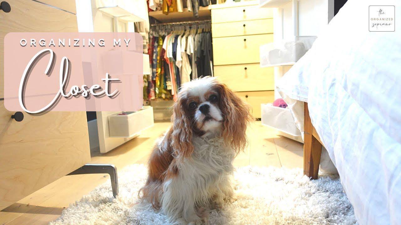 Professionally Organizing My OWN Closet | Organize With Me