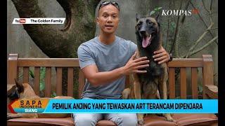 Kasus Anjing Gigit ART, Bima Aryo Terancam Dipenjara