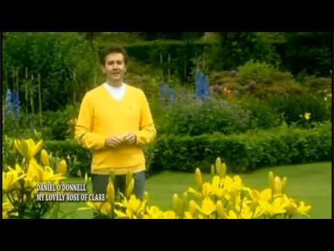 Daniel O'Donnell  -  My Lovely Rose Of Clare