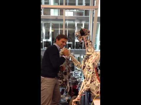 Man vs real Humanoid Robot in Zurich - arm wrestling