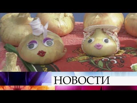 ВИвановской области проходит масштабный Фестиваль лука.