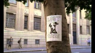 Loeries 2009, Bronze, Advertising - TV, FoxP2, Mweb, Lost
