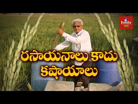 Cow Based Organic Farming | Warangal Farmer Gowtham  | hmtv Agri