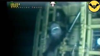 Top 5 Des Mégalodons Capturées en Video Dans la Réalité! Partie 2.