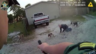 Dog owner says deputy had 'no right' to shoot his dog after pit bull attacks